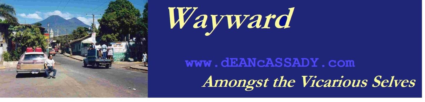 Wayward the novel